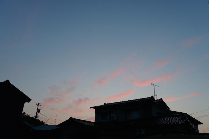 Blog361